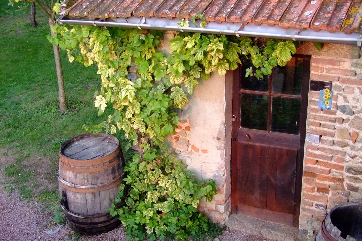 Cabane vigneronne