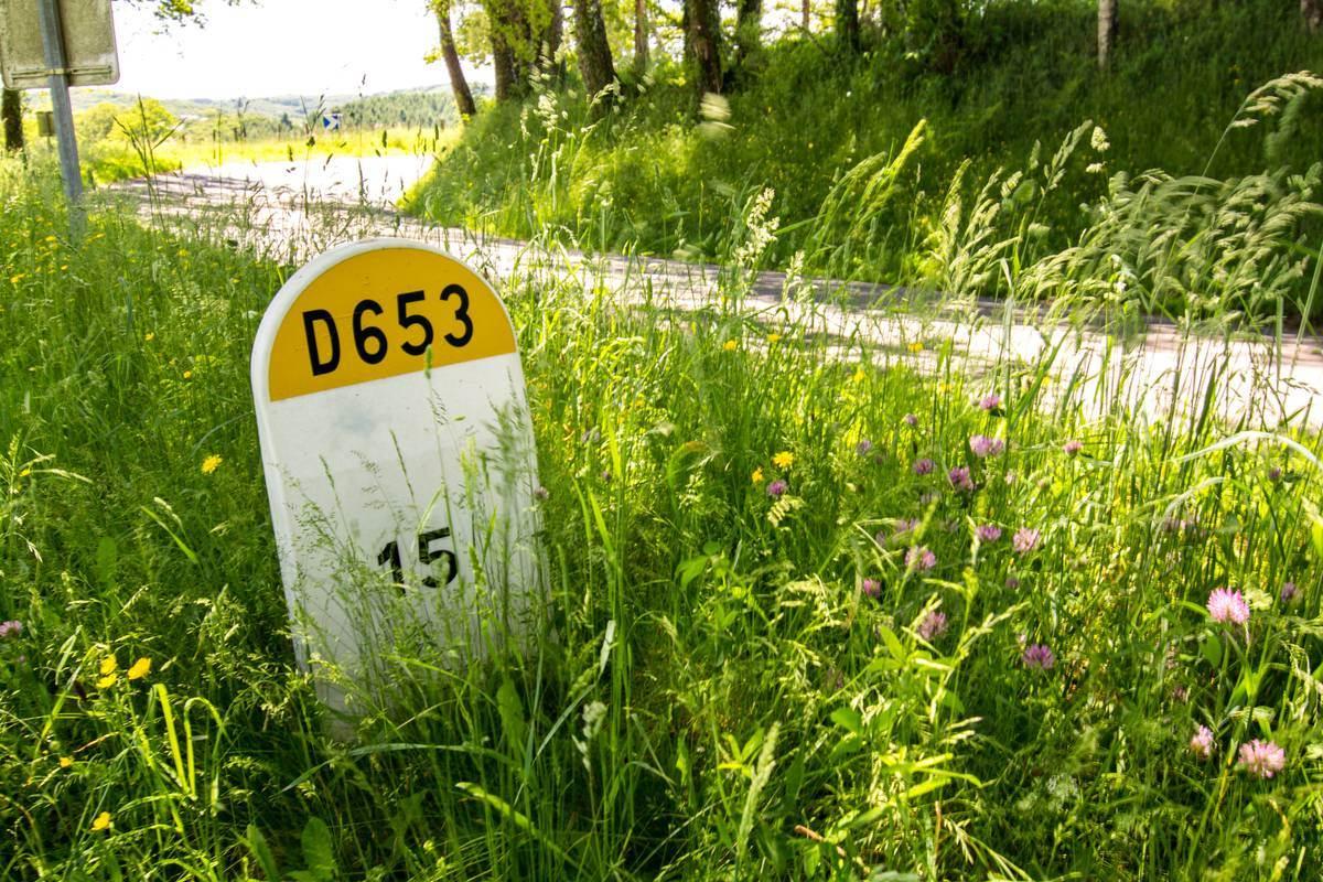 Borne D653 - Lot