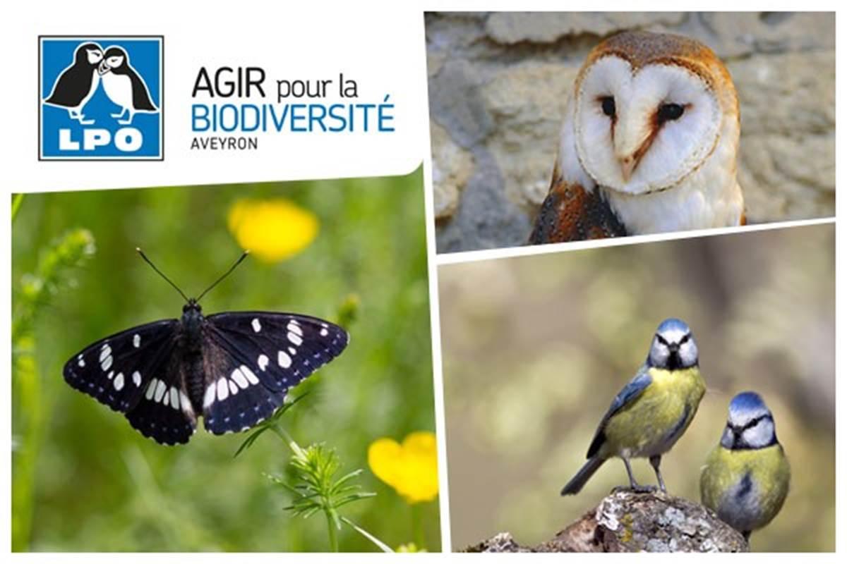 La Réserve Naturelle D'Oiseaux