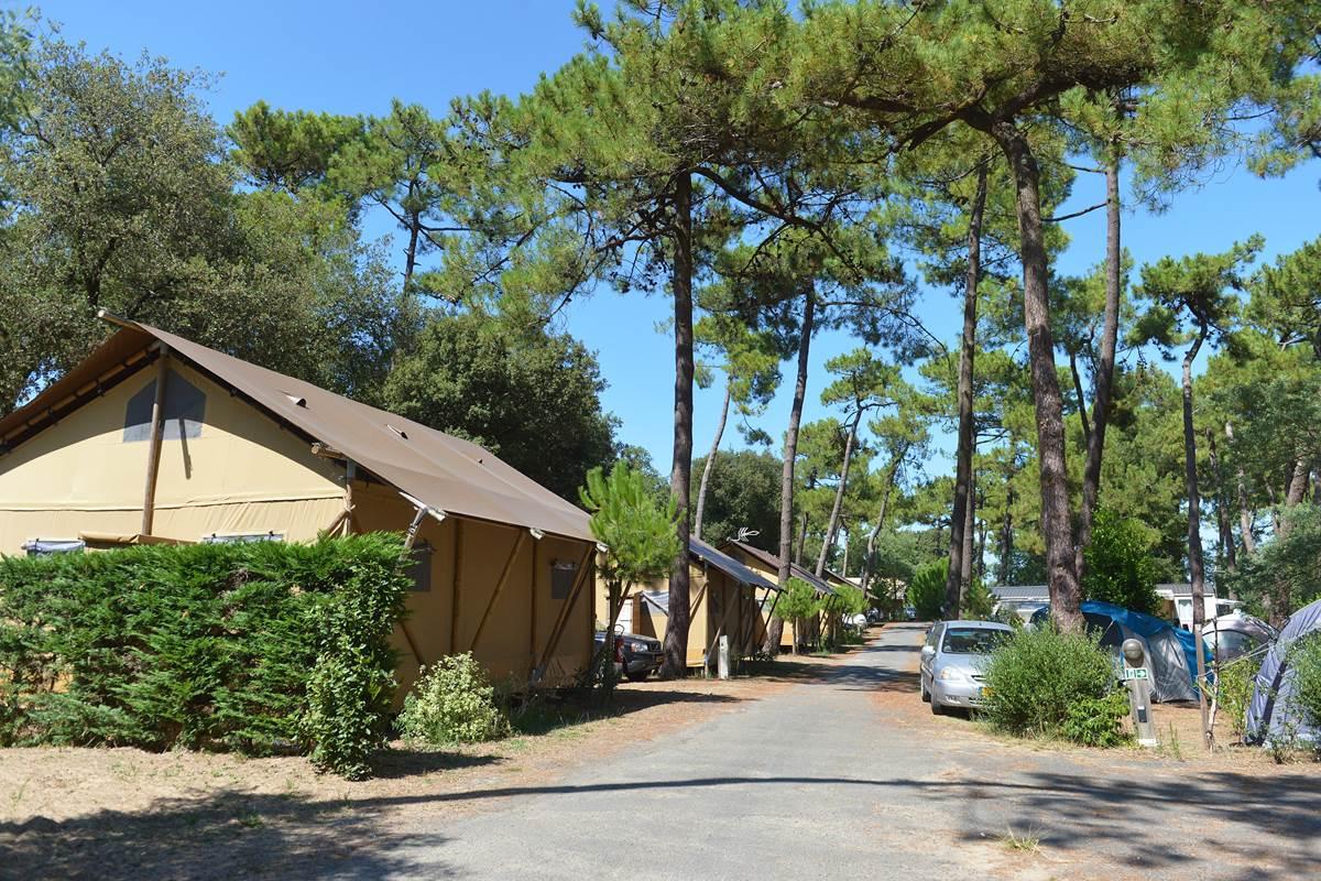 Camping Les Pins - Ile d'Oléron