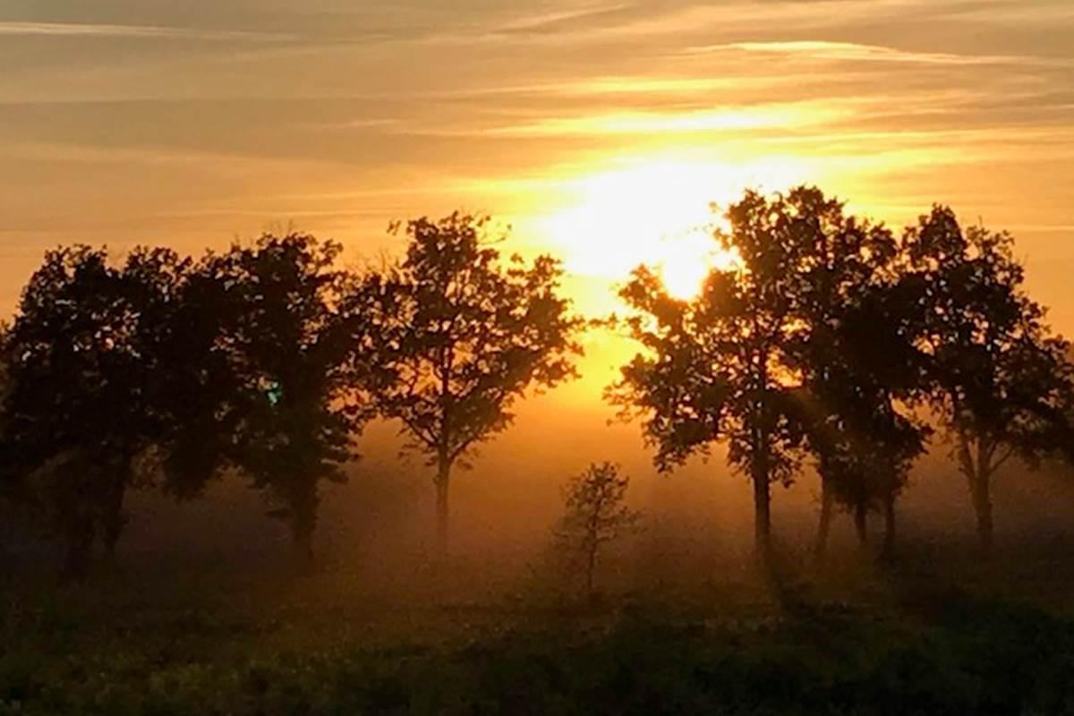 coucher_de_soleil dans les Landes