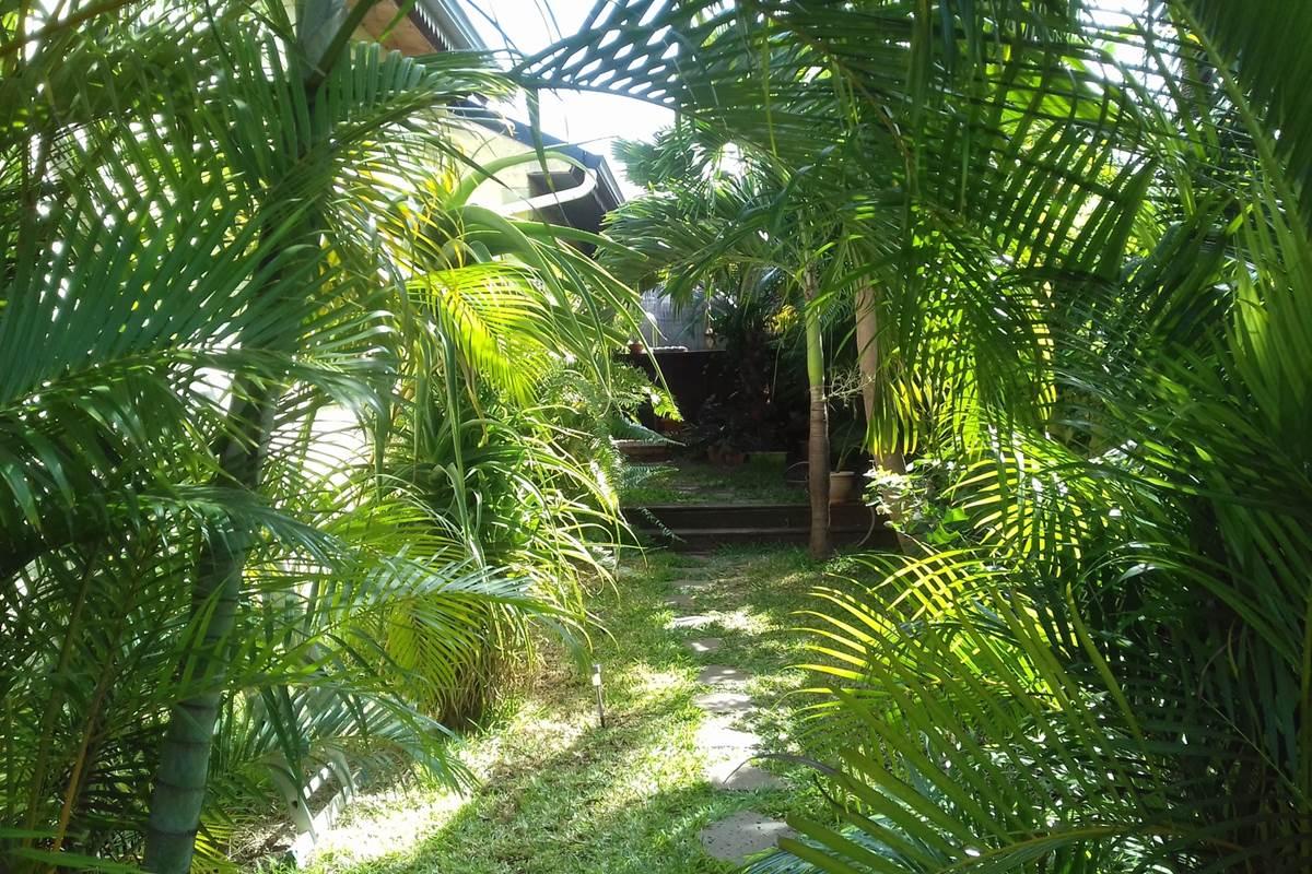 Lentrée de notre maison, accès à Dodo Salé, notre chambre d'hôte