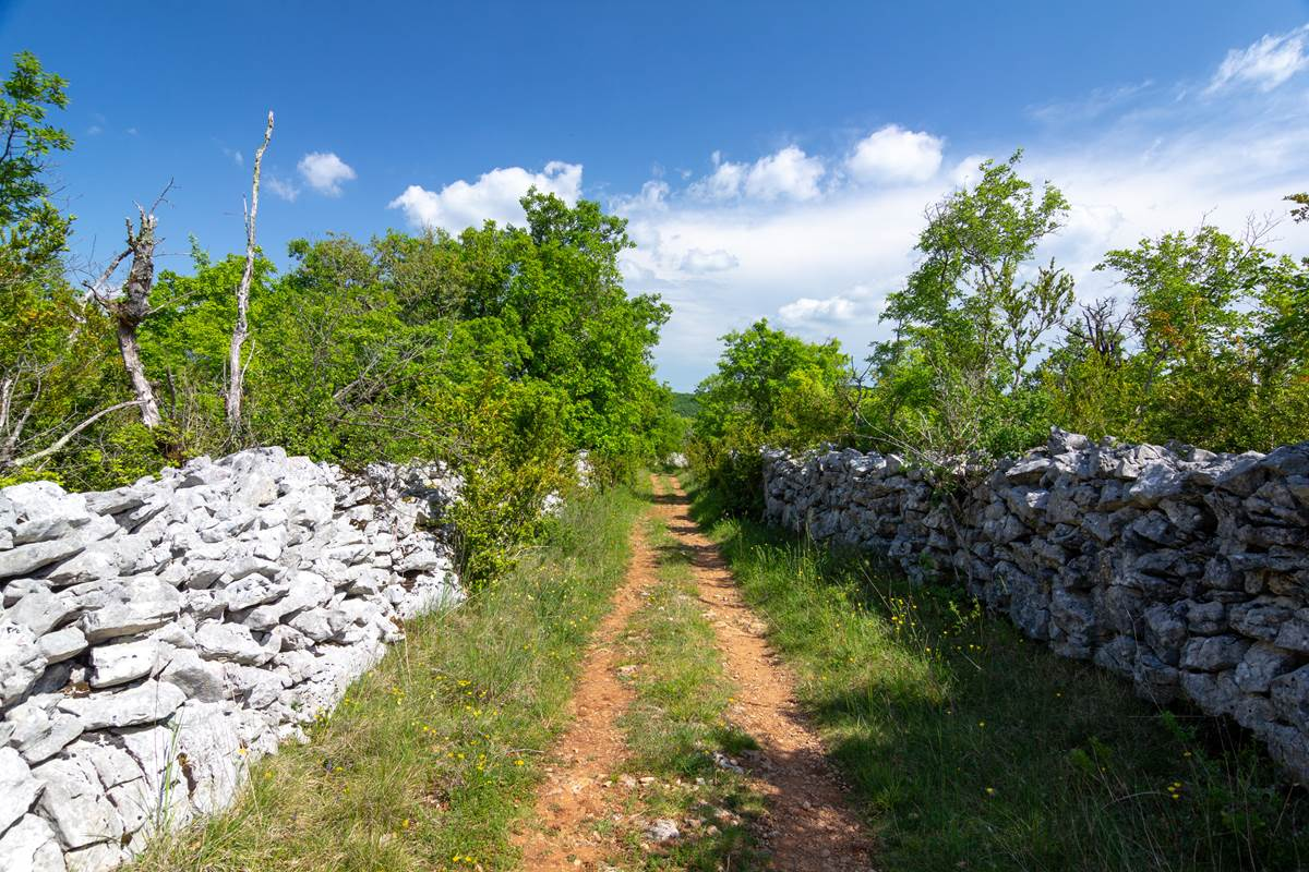 Chemin du causse ©Cyril Novello 180506-162659