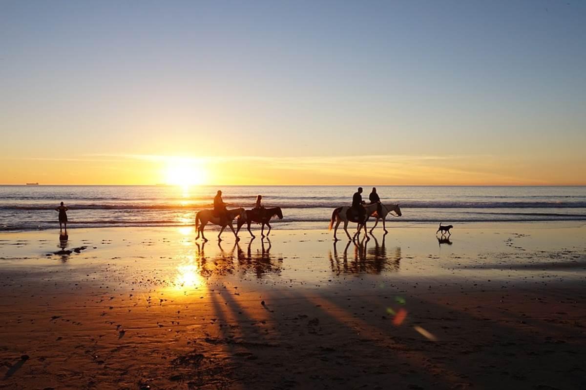 Ballade à cheval sur la plage