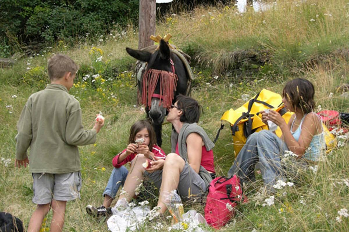 asinerie-badjane-dejeuner-sur-l-herbe-pause-repas