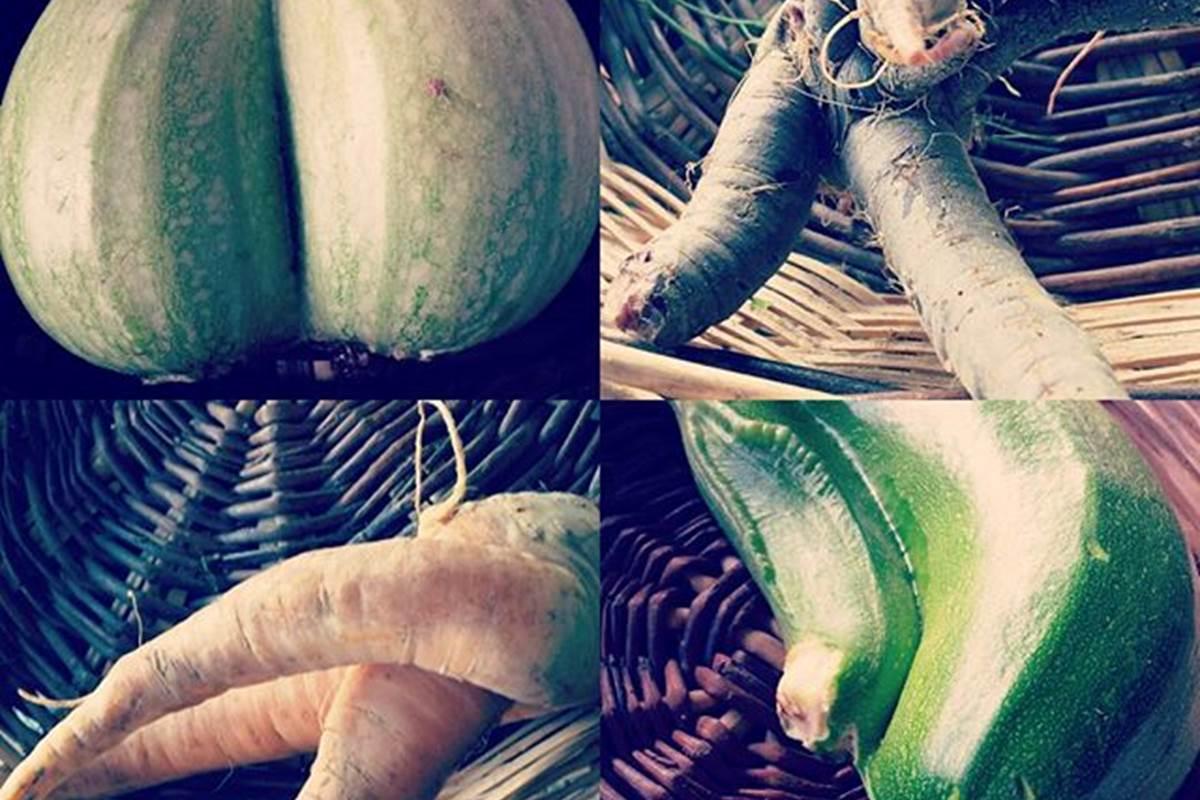 Variation de Légumes Bio