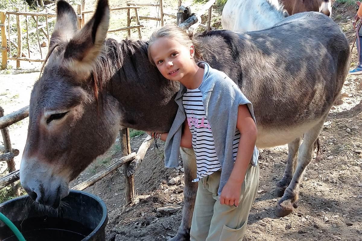 Prendre soin de mon âne