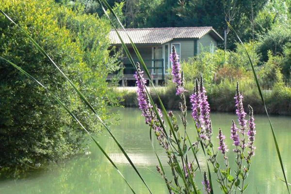 chalet autour de l'étang