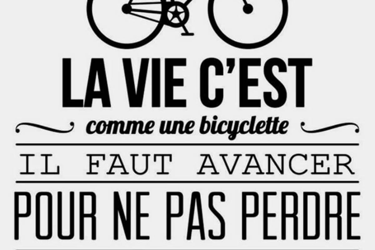 vélo marais