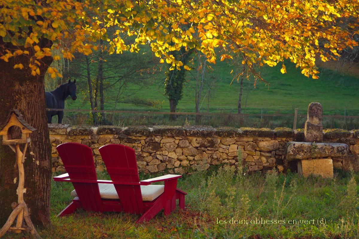 MATIN automne