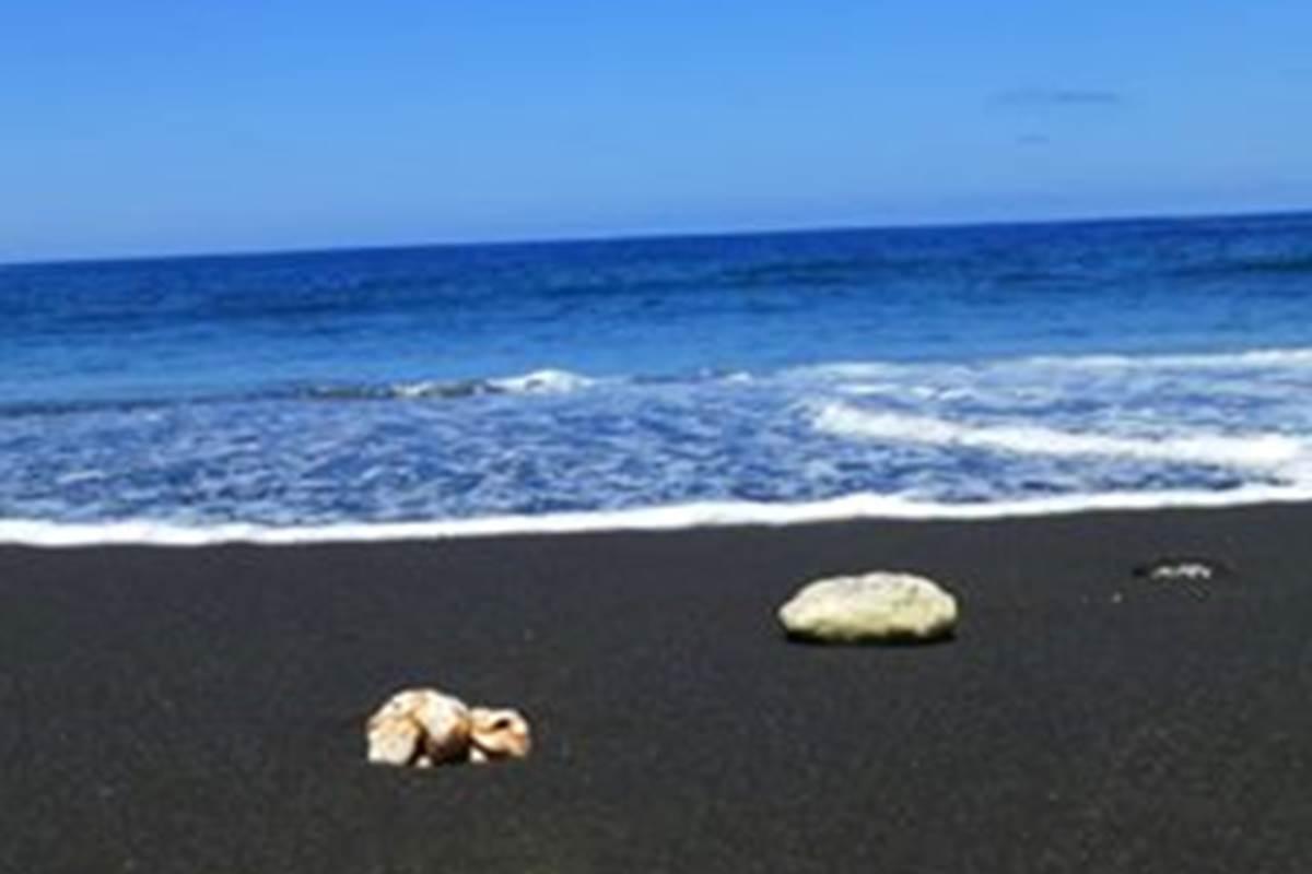 La plage de sable noir d'Etang Salé, l'une des plus belle de l'ile !
