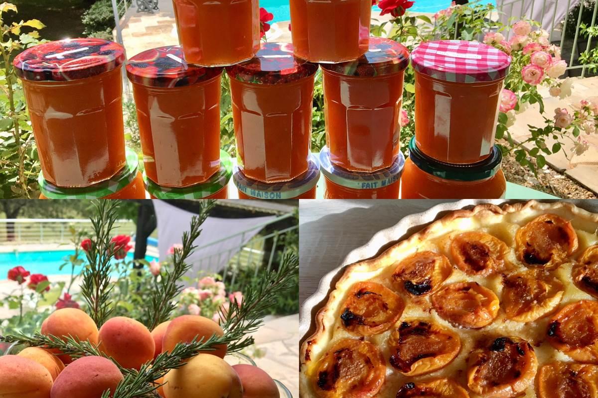 abricots tarte et confitures bnb Feuillantines dordogne