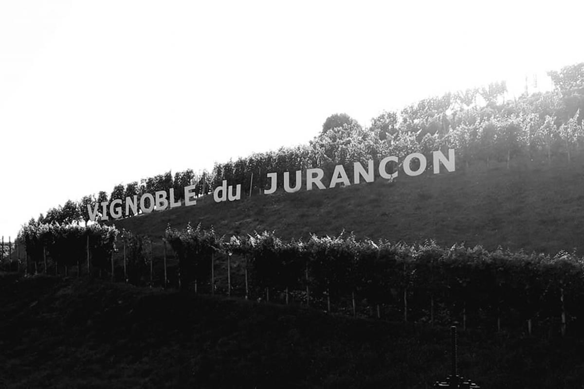 route-du-vignoble vineyards