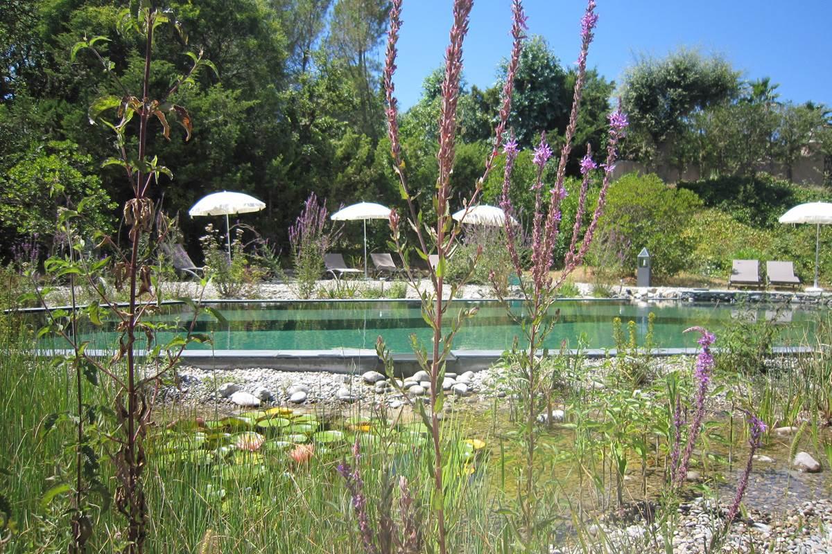 bassin de baignade, régénération et plages