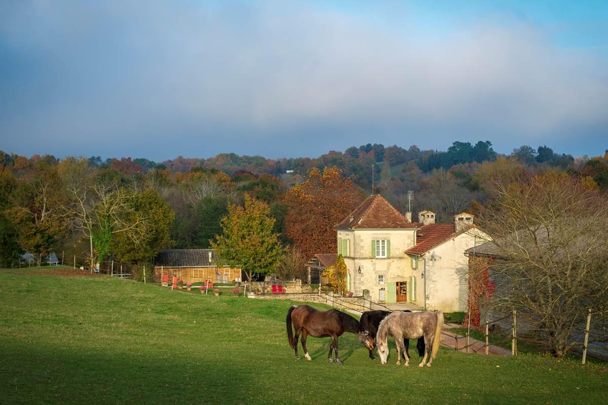 Le Domaine entouré des chevaux (c) Michel Dartenset