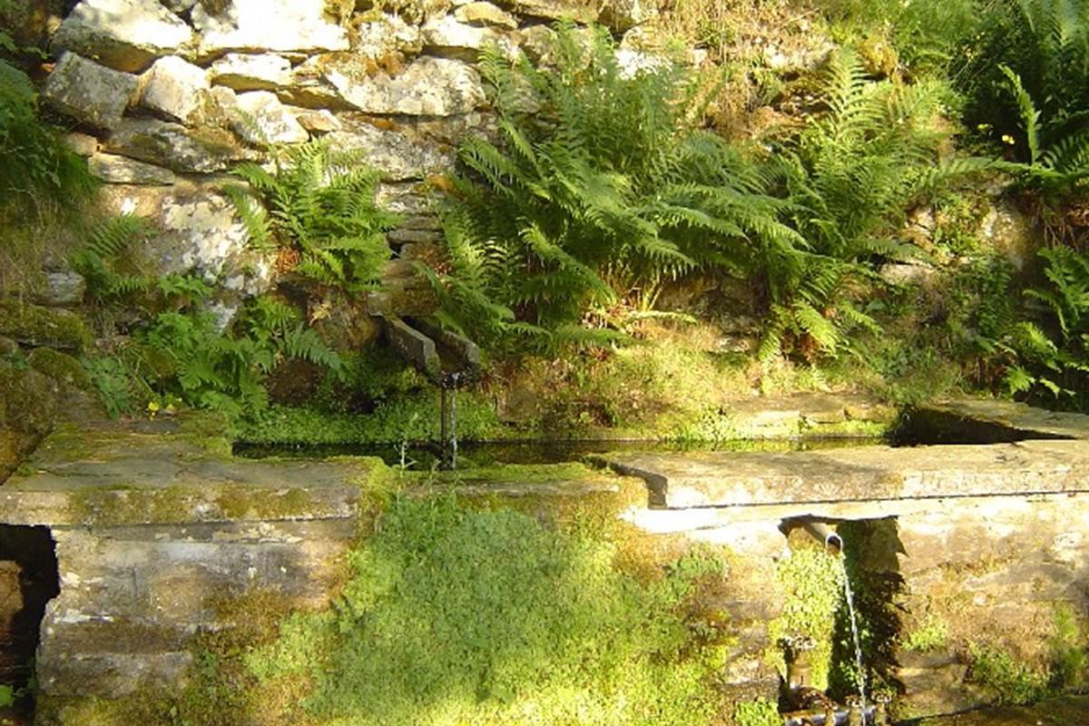 asinerie-badjane-un-de-nos-fontaines