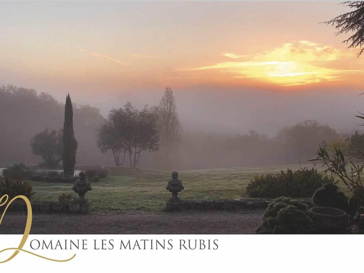 vue depuis LES MATINS RUBIS-chambre-d-hote-lesmatinsrubis-tarn-et-garonne-occitanie-location-toulouse