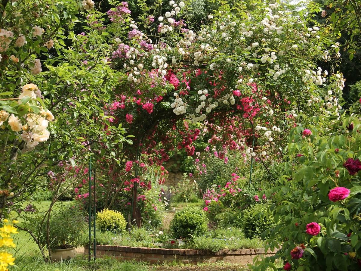 Le jardin avec plus de 90 variétés de roses