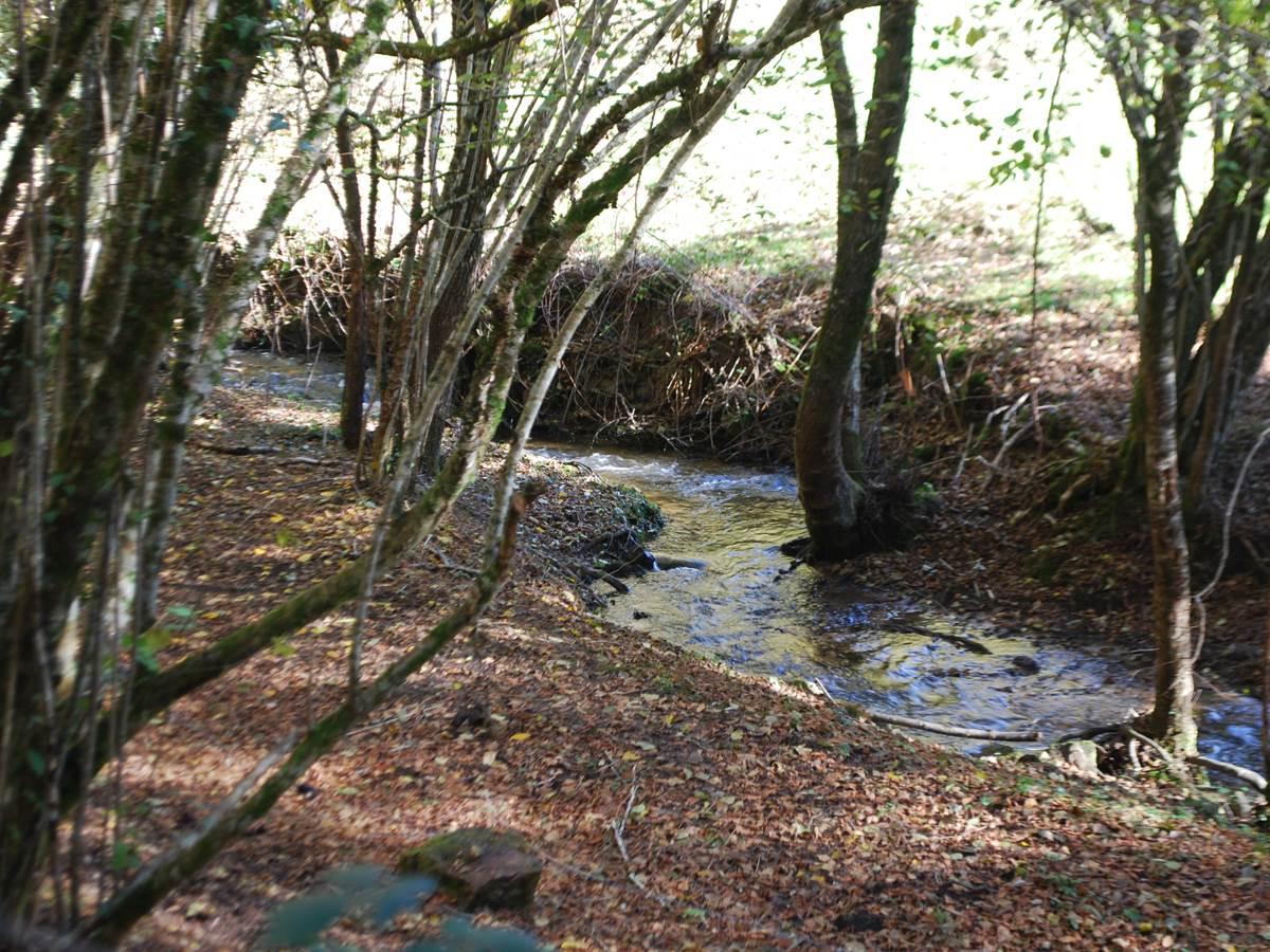 le ruisseaux des fantaisies à 15' à pied du Ranch des Lacs Hotel 87120