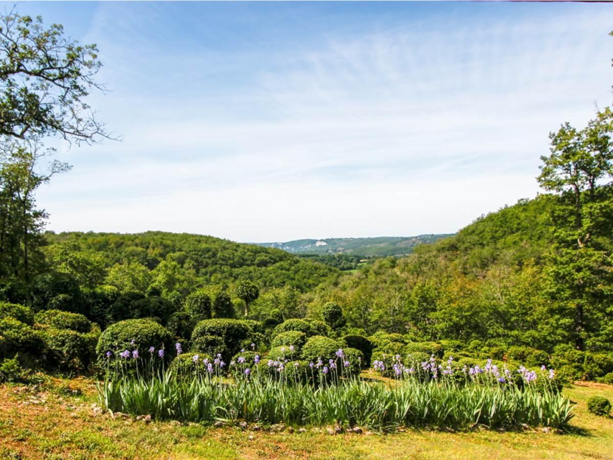 Point de vue sur la vallée et le massif de buis