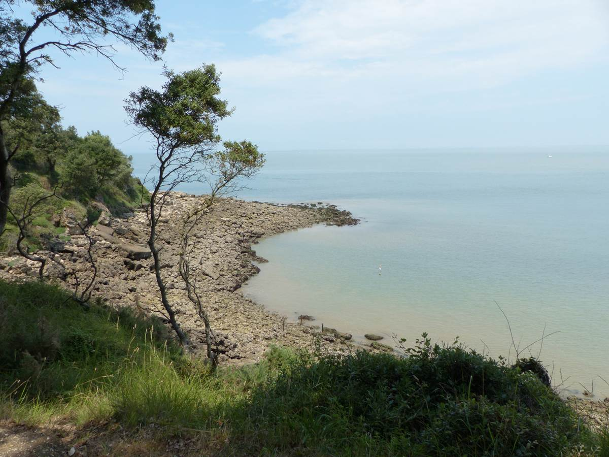 Blocs gréseux de la côte Nord de l'Ile d'Aix lors de la balade nature du Fort Liédot
