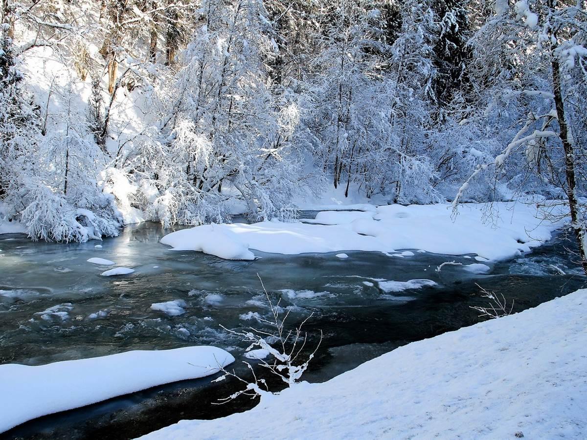 winter-2640608_1920
