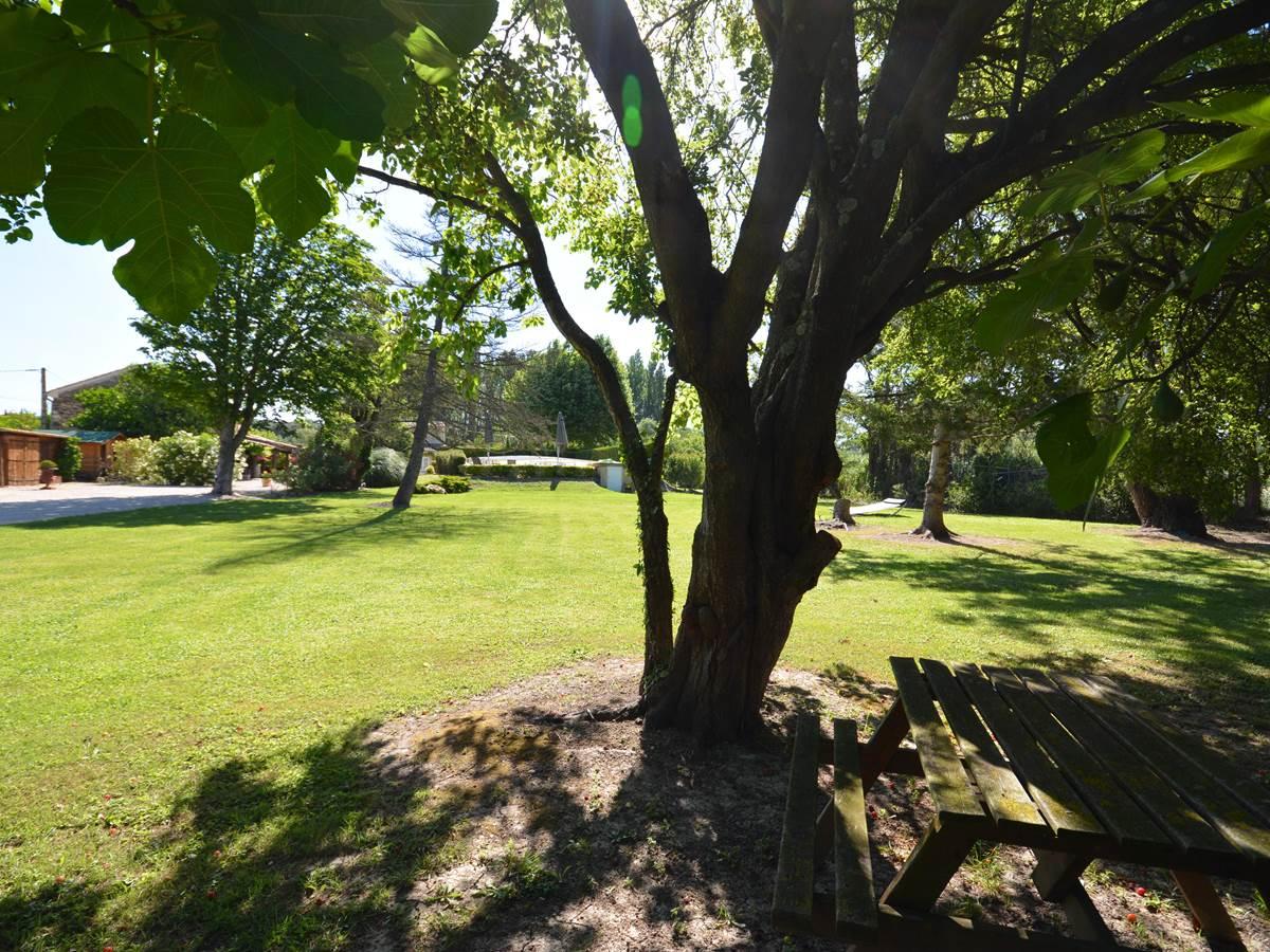 le parc ombragé du Mas Julien