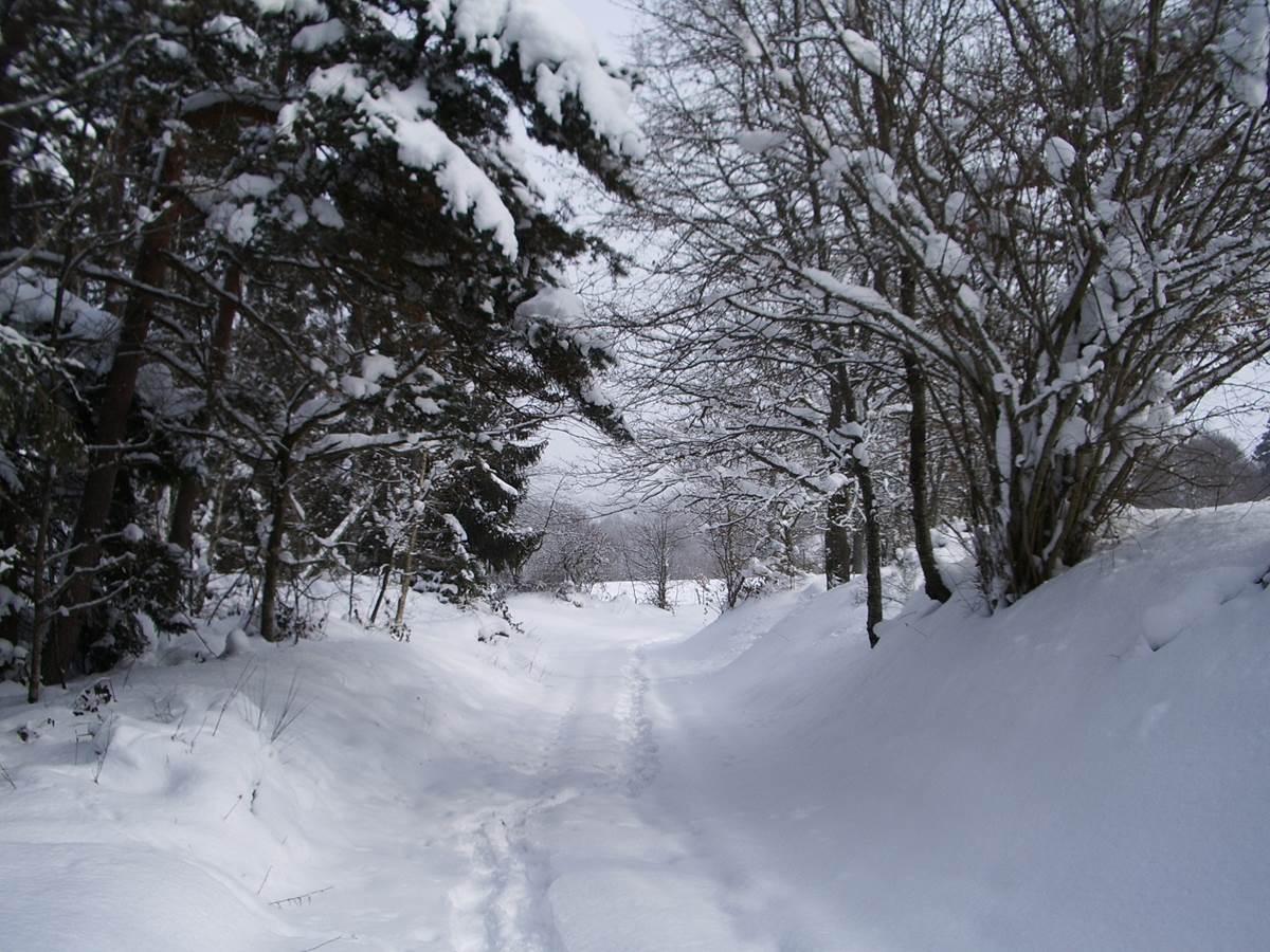 chemin enneigé dans notre hameau