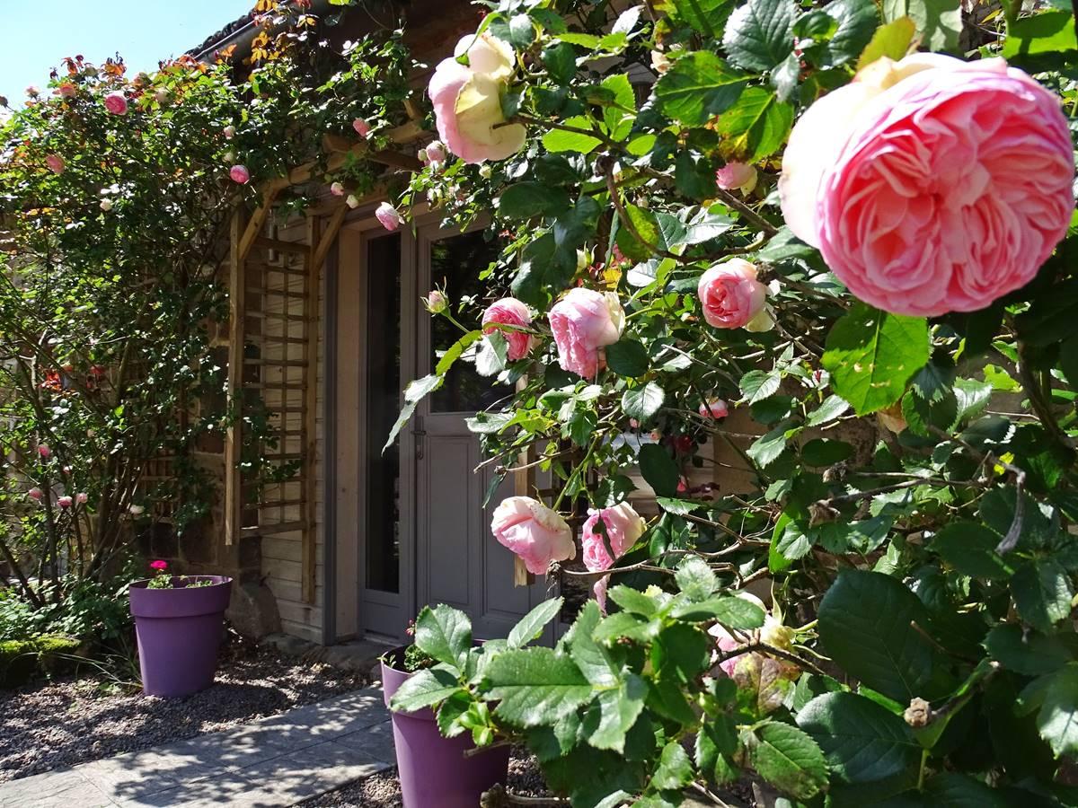 les instants voles jacuzzi privatif - Mignonne, allons voir si la rose......