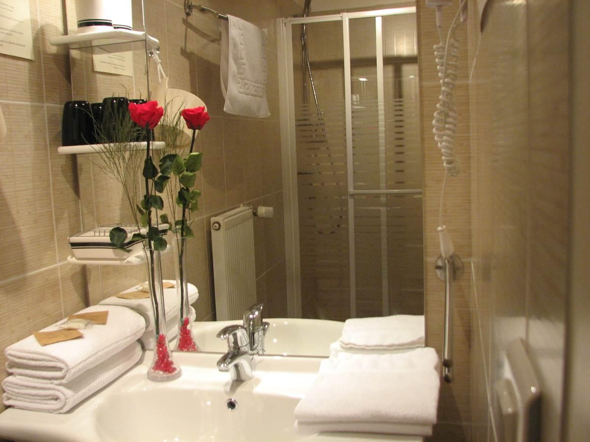 Salle de douche Chambre double Junior Le Pas de l' Âne saint Ondras