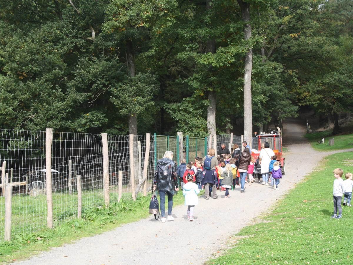 Parc à Gibier - La Roche