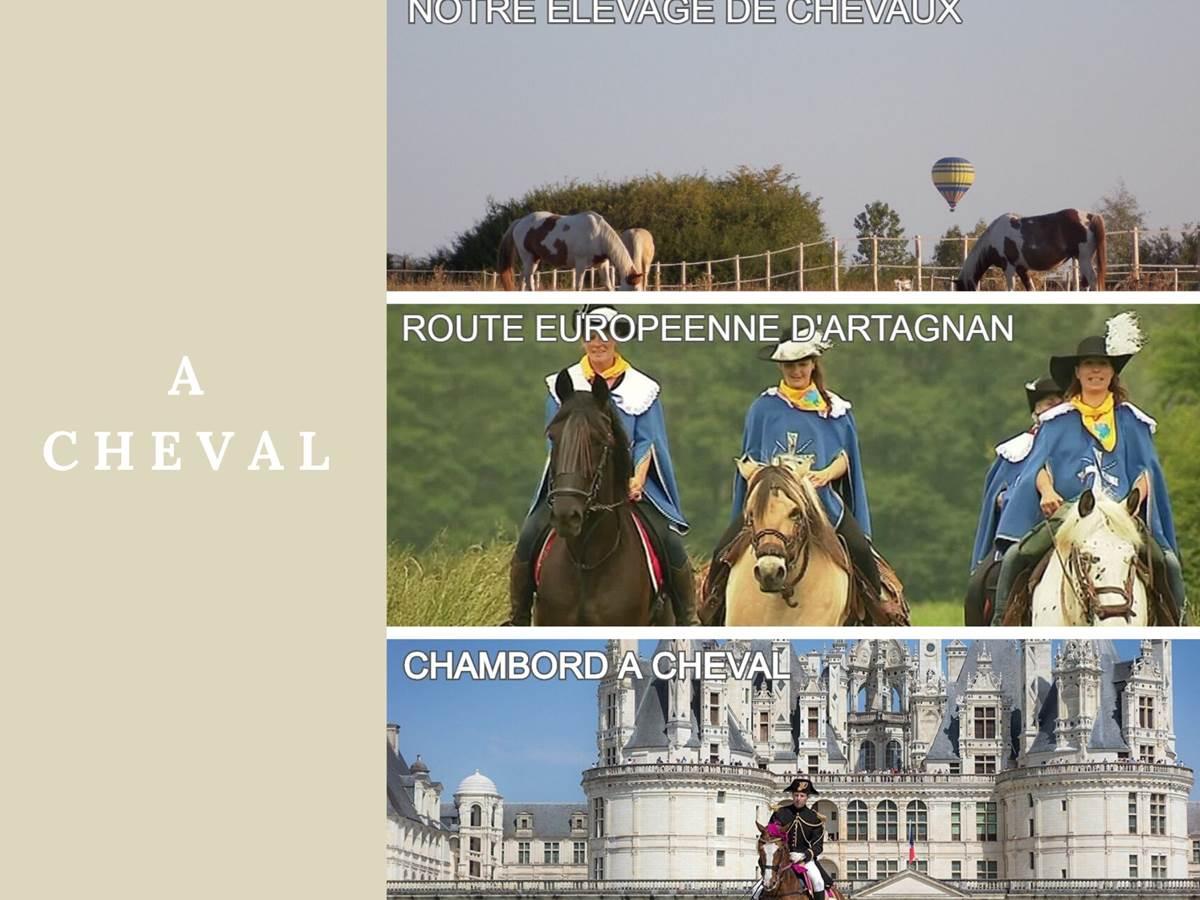 Domaine du Gué du Roi A Cheval