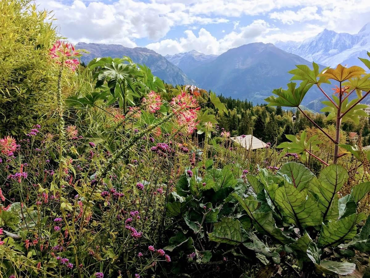 jardin cimes12017