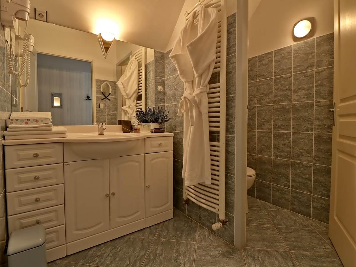 Salle de bain Chambre double de Luxe Le Pas de l' Âne Saint Ondras