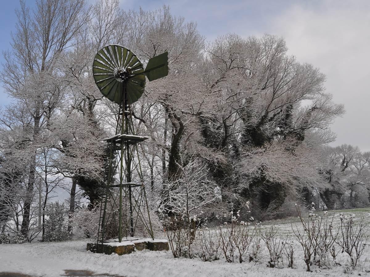 Eolienne sous la neige