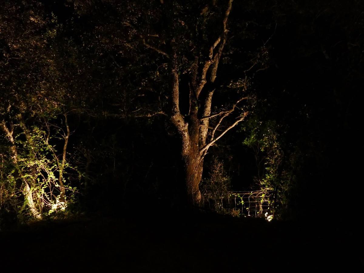 Espace bien être de nuit