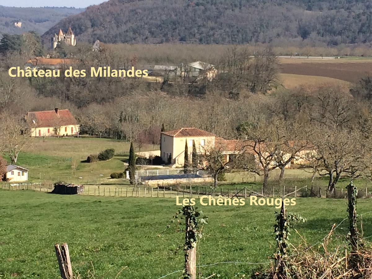A 1 km du château des Milandes