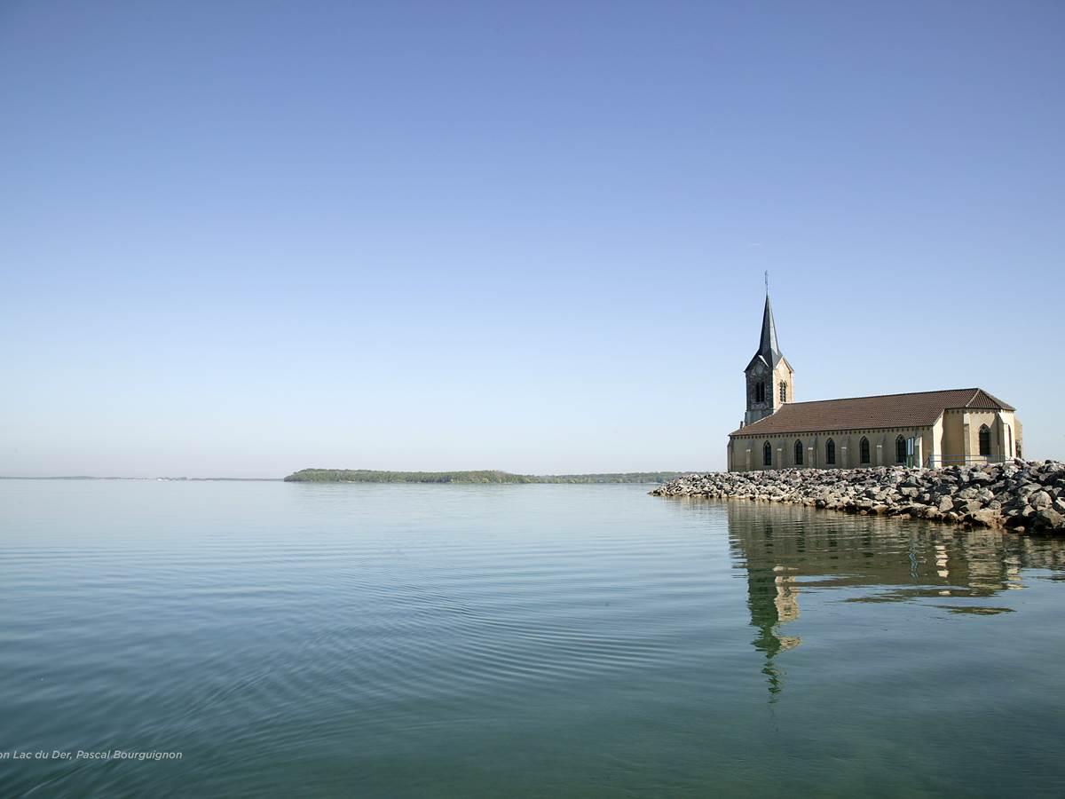 Collection Lac du Der, Pascal Bourguignon
