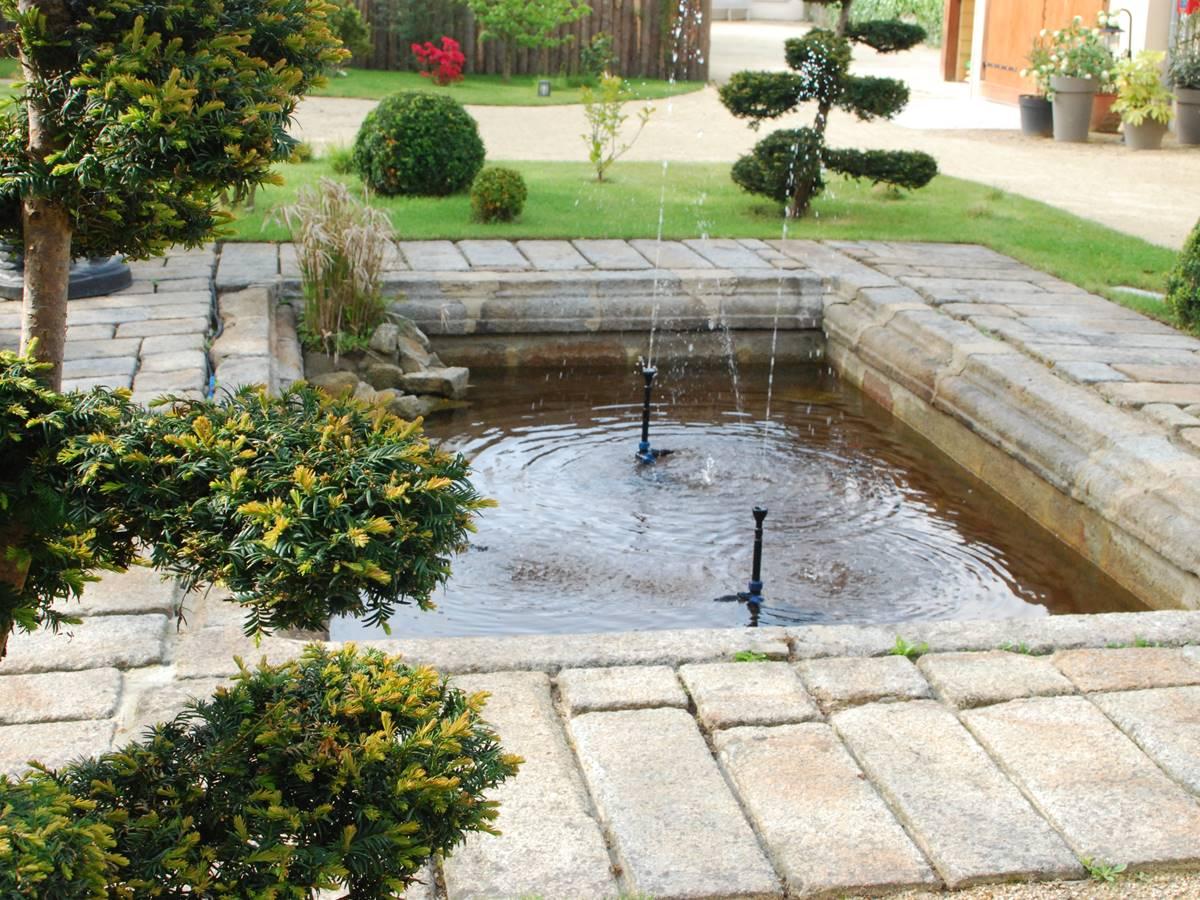 bassin jardin