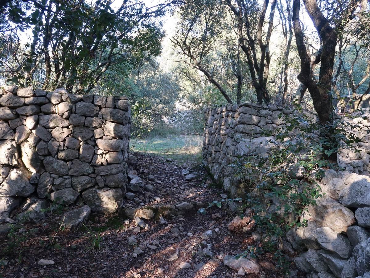 Des murs dans notre domaine