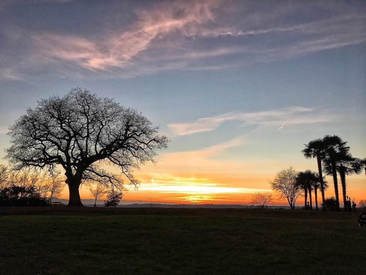 vue du jardin au coucher du soleil