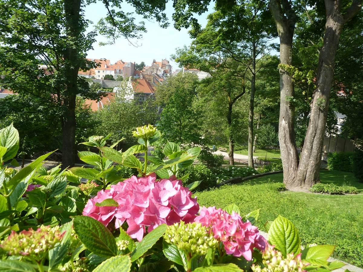Jardin Bucciali