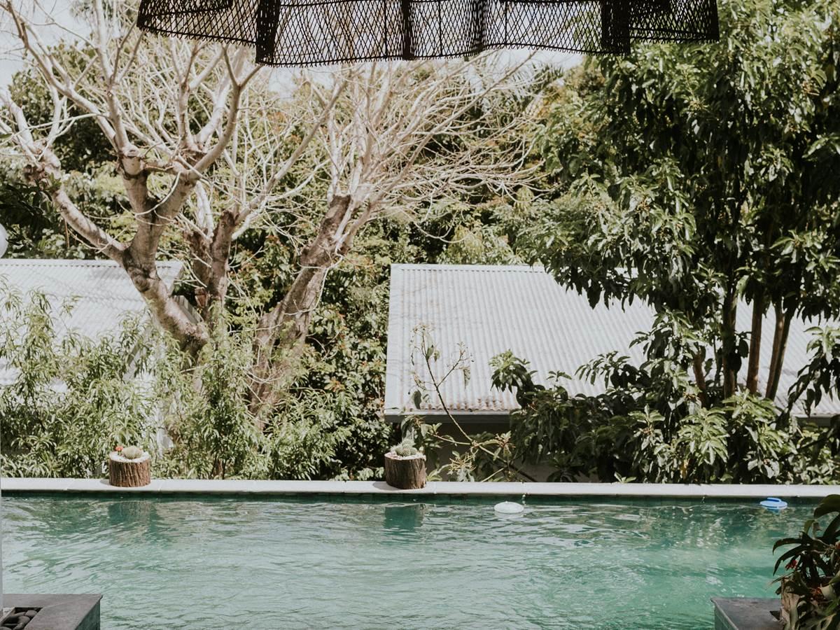 Vue sur piscine Jardin de Ravintsara