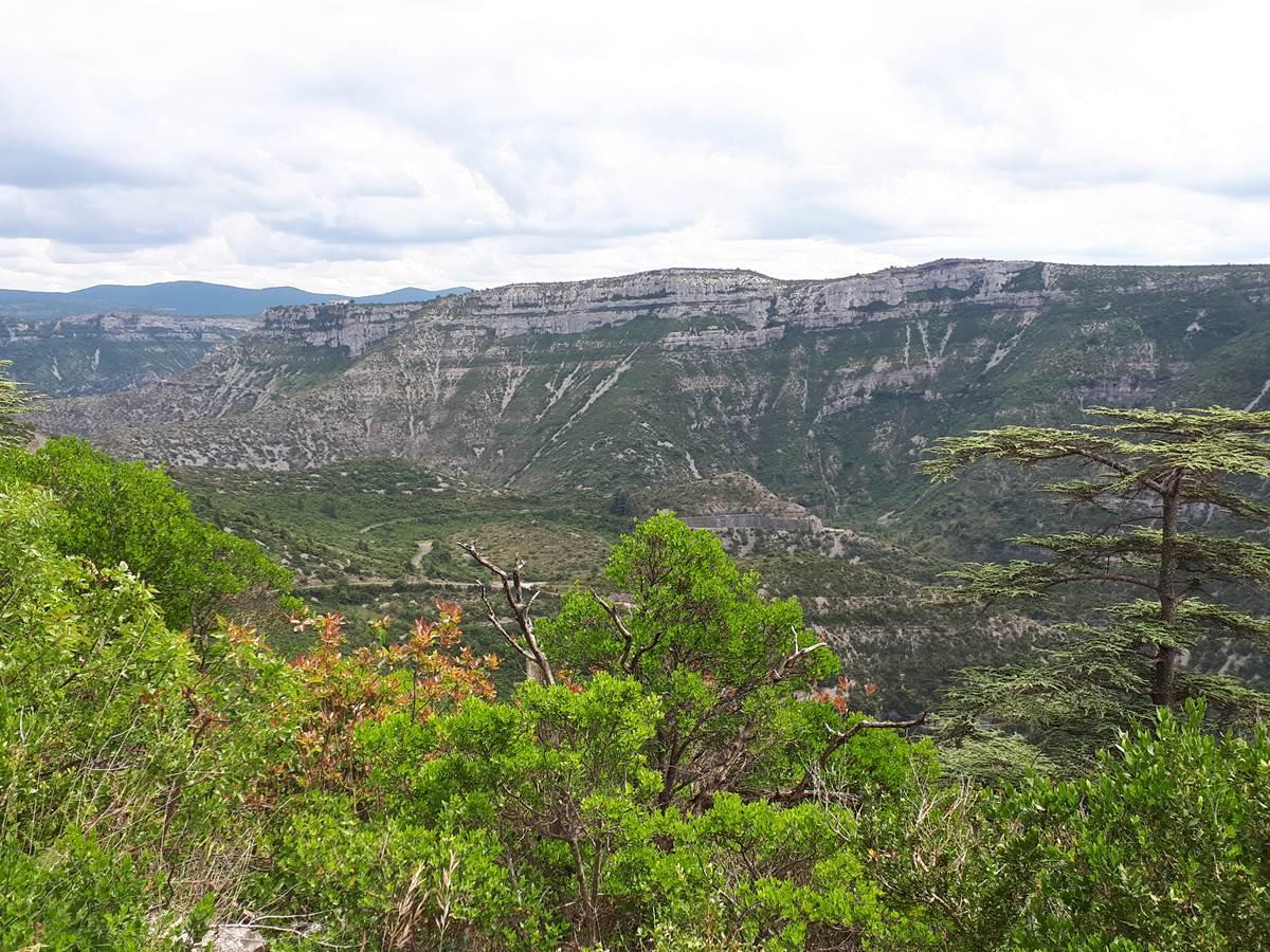 Gorges de la Vis au sud d'Alzon