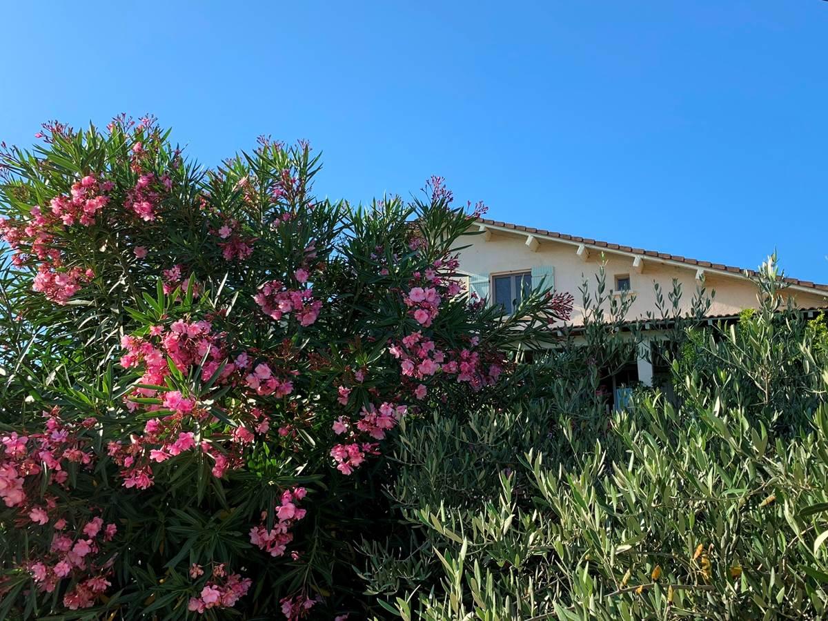Mas Saint-Ange à Lunel, vue côté piscine de la maison d'hôtes