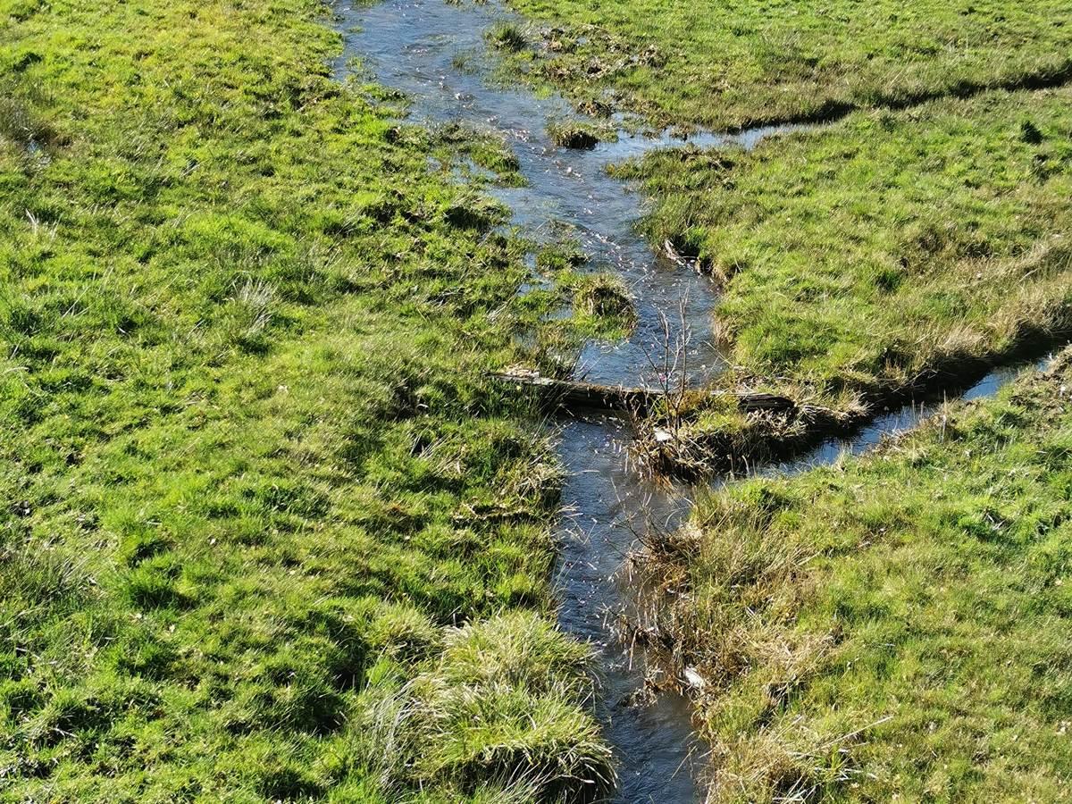 Le ruisseau des près