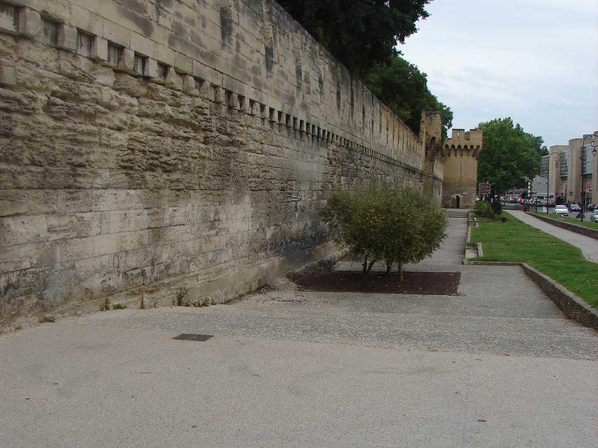Avignon remparts