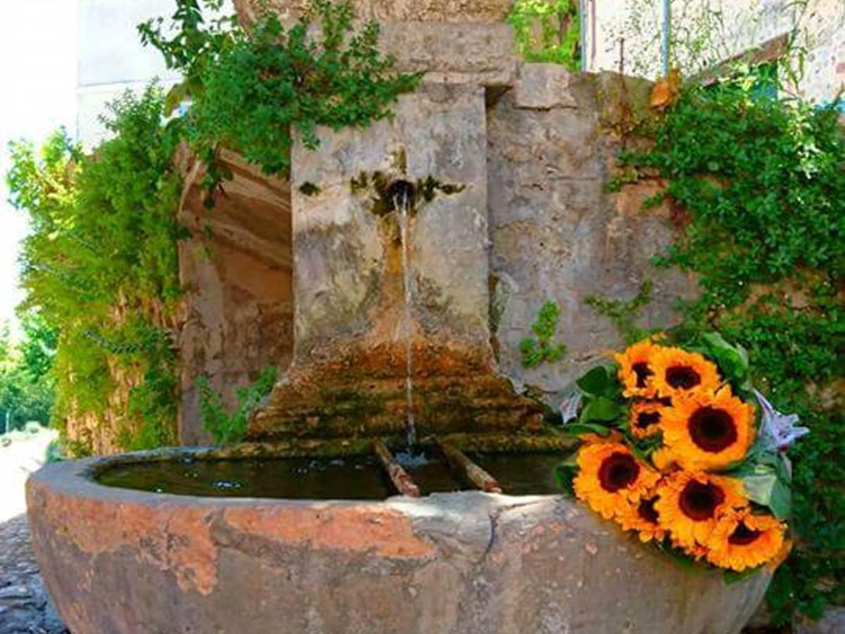 fontaine tournesols soleil flayosc draguignan village perché  verdon