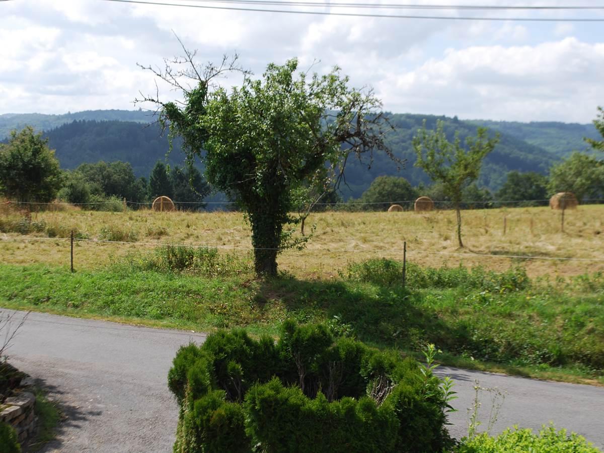saison des foins, paysage campagnard, vue devant Le Ranch des Lacs