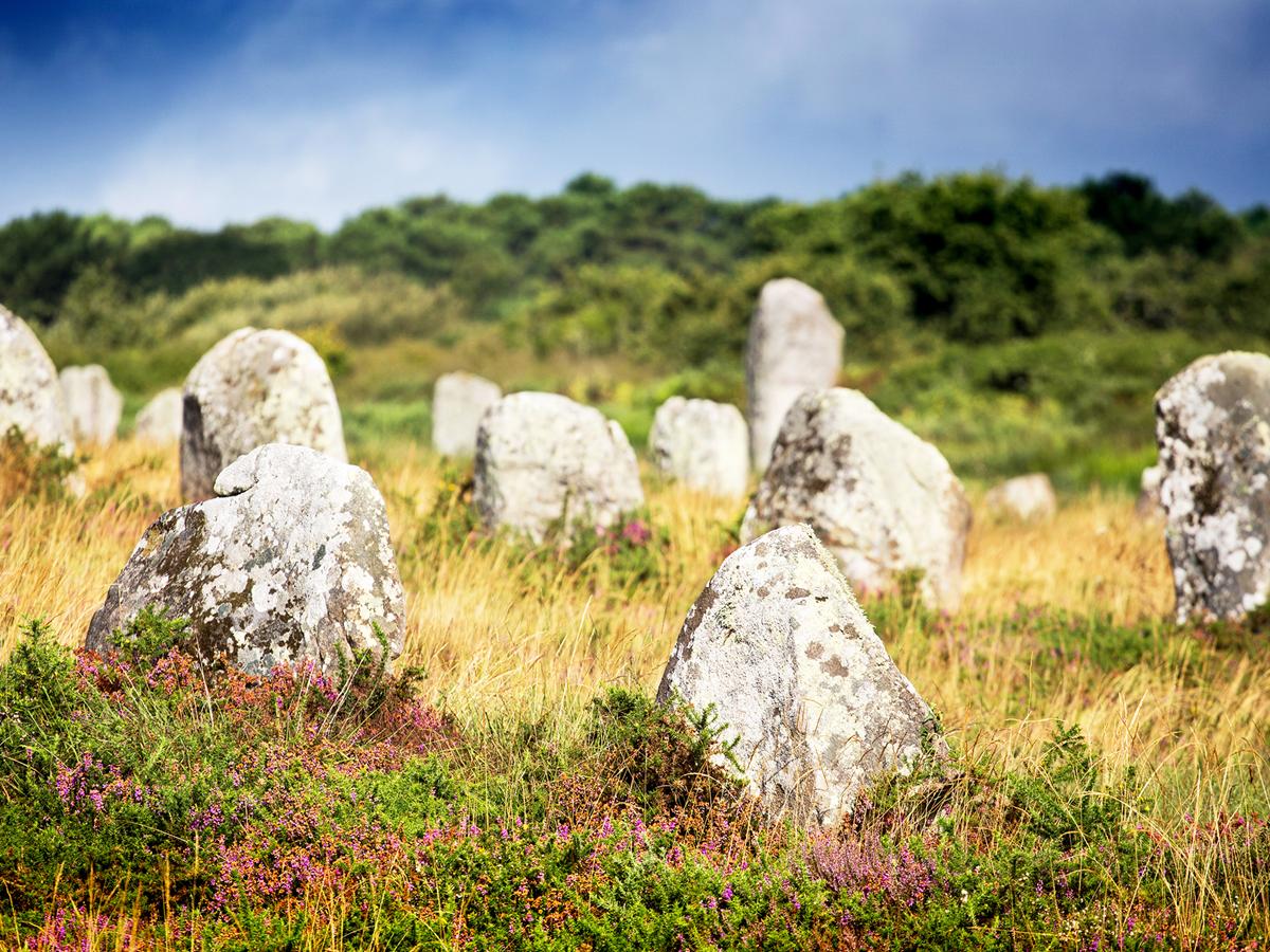 Menhirs et mégalithes dans l'alignement du Ménec, Carnac